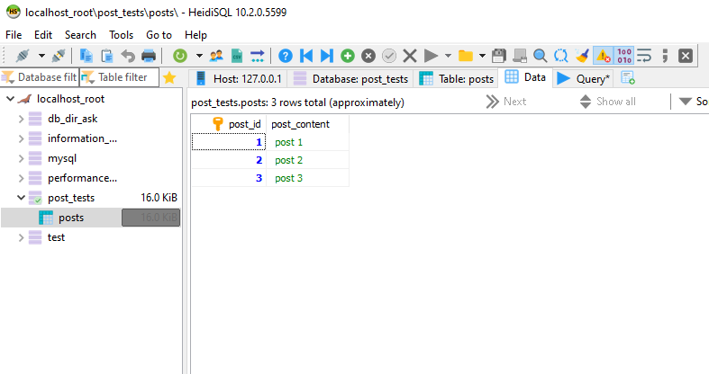 Screenshot from Heidi SQL after execution above query - inserted data