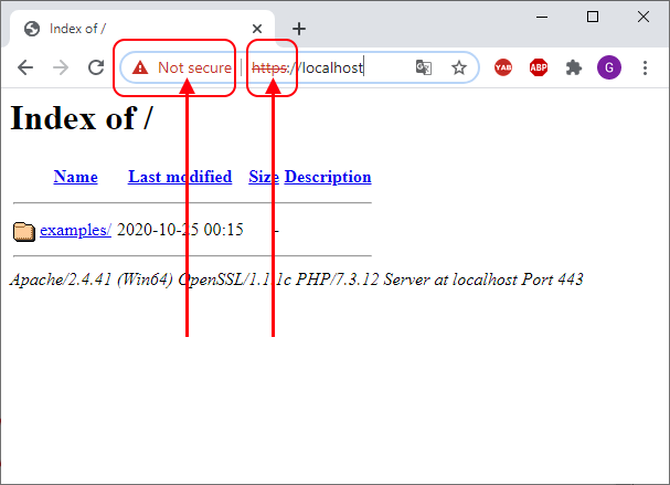 Apache 2 with https protocol on Windows.