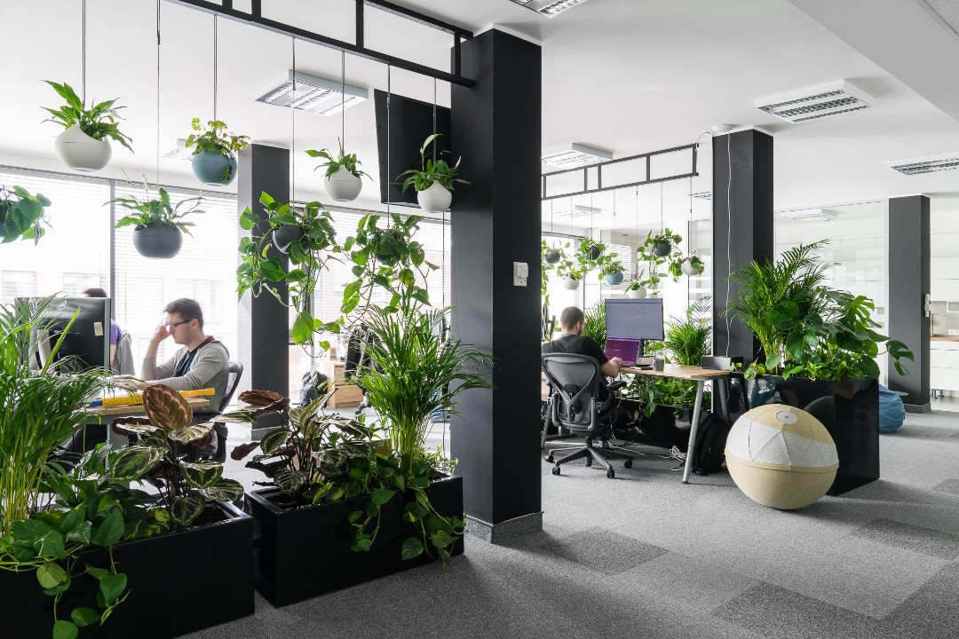 Spartez - really nice office on front page, really green